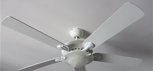 Ceiling Fan or Ceiling Lighting Globe?